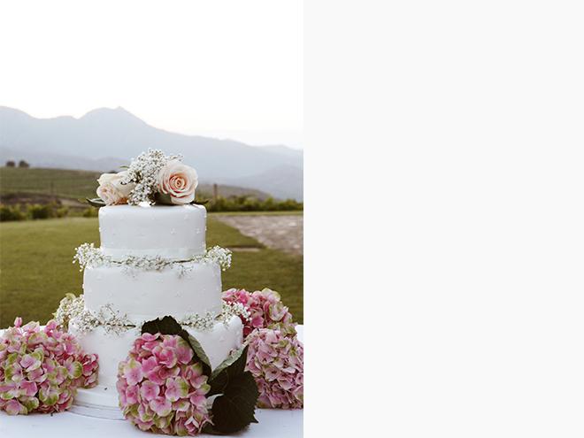 Fotografia de boda Girona, Cadaqués, Costa Brava, wedding photographer, Santos Costura, Sa Perafita, pastel de boda, wedding cake